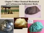 Chapter 7: Other Chemical/ Biochemical and Carbonaceous Sedimentary Rocks