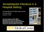 Acinetobacter  Infections in a Hospital Setting