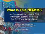 What Is This NEMSIS?