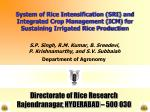 System of Rice Intensification (SRI) and Integrated Crop Management (ICM) for Sustaining Irrigated Rice Production