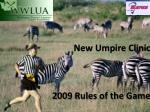 New Umpire Clinic 2009 Rules of the Game