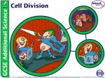 Why do cells divide?