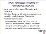 TIPQC: Tennessee Initiative for Perinatal Quality Care