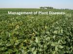 Management of Plant D iseases