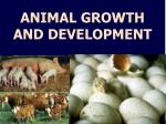 ANIMAL GROWTH AND DEVELOPMENT