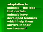 adaptation in animals – the idea that certain animals have developed features which help them survive in their environme