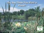 So You Think You Want a Pond?