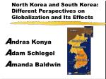 North Korea and South Korea: Different Perspectives on Globalization and Its Effects