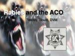 Rabies and the ACO