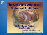 The Child and Adolescent Brain and Addictions